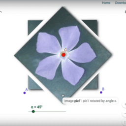 Rotational Symmetry with Images