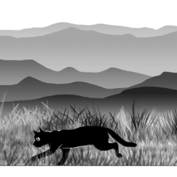 Cat on the Loose - by Mesut Topal