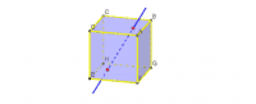 Rotational Symmetry of Cube