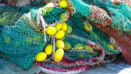 Netze von Quader und Würfel
