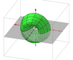 Copy of Rotation of a Curve around the y-axis