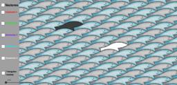 Juego de las sardinas