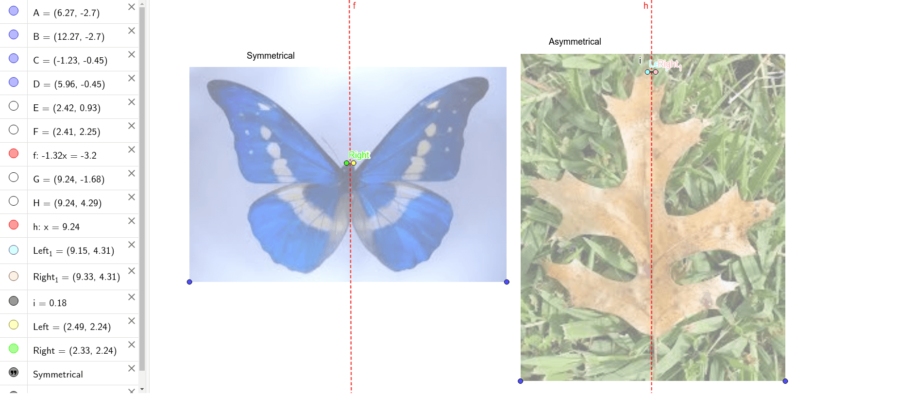 DIRECTIONS: Click on one of the two dots and use it to trace the butterfly and the leaf. Then, compare the left side tracing to the right-side tracing of the object.  Press Enter to start activity