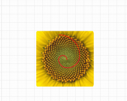 The Golden ratio in math