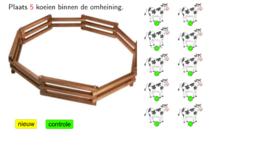Koeien binnen de omheining