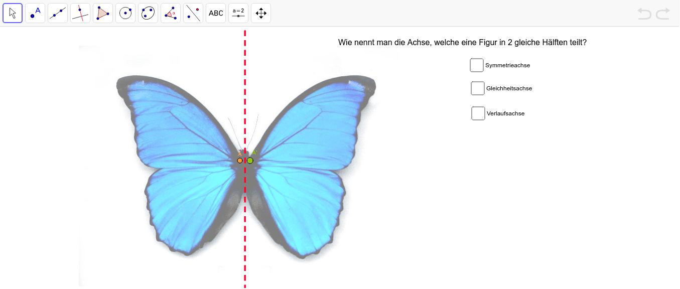 Ziehe den Punkt A entlang des Umrisses des Schmetterlings. Was fällt dir auf? Beantworte zusätzlich die Frage und kreuze die richtige Antwort an. Drücke die Eingabetaste um die Aktivität zu starten