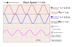 Superposition of Transverse Waves
